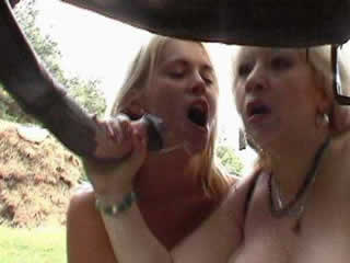 Two MILF sucking dick horse